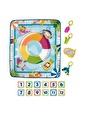 Fisher Price Fisher Price Grr44 Havuz Keyfi 4 Oyuncaklı Renkli Oyun Minderi Renkli